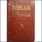 Bíblia de Estudo Pentecostal para Juventude Edição Missionária Marrom